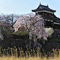 Koriyama Castle Nara-b.jpg