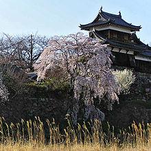Torre restaurata del Castello koriyama
