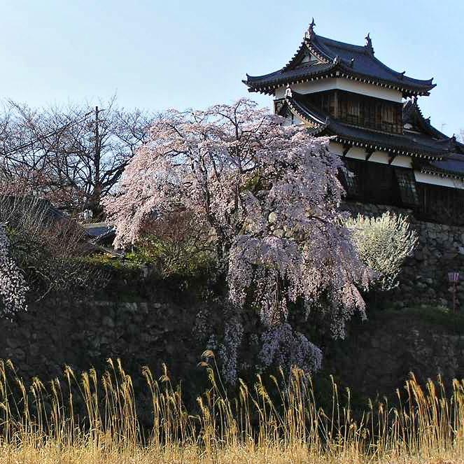 Koriyama Castle Nara-b