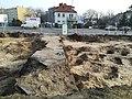 Kosynierów Park in Poznań 2020 old evangelical cemetery 02.jpg