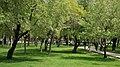 Kurtuluş Parkı - panoramio (2).jpg