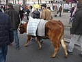 La vache Pimprenelle au Carnaval de Paris 2014.jpg