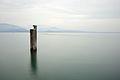 Lake Garda - Manerba del Garda, Brescia, Italy - June 29, 2013 02.jpg