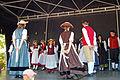 Landestrachtenfest S.H. 2009 12.jpg