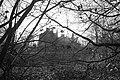 Landscapes-4462.jpg