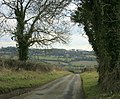 Lane between Colerne and Saltbox Farm - geograph.org.uk - 1722003.jpg