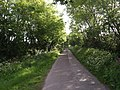 Lane up Hartgrove Hill - geograph.org.uk - 450081.jpg