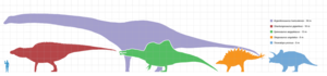 Dinosaur size - Scale diagram comparing a human and the largest-known dinosaurs of five major clades