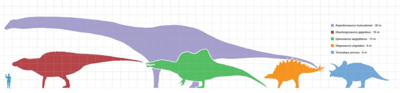 Largestdinosaursbysuborder scale.png