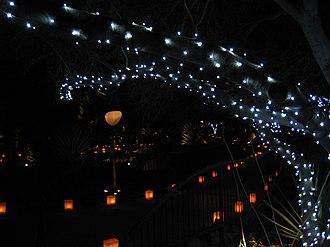 Luminaria - Las Noches de las Luminarias, at the Desert Botanical Garden,  Phoenix