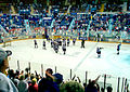 Last Bears game at Hersheypark Arena May 4, 2002.jpg
