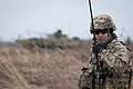 Lead in the air - live-fire exercise in Ukraine 170316-A-RH707-070.jpg