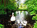 Levin Park Göttingen.jpg