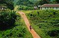 Liberia, Africa 2012 - panoramio (18).jpg