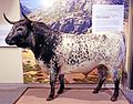 Lidia bull.jpg