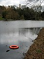 Lifebuoy, Lake and Tower - geograph.org.uk - 1186512.jpg