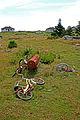 Lighthouse DSC01241 - Used Bikes for Rent........ (7706238864).jpg