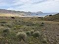 Loma Pelada, Parque Natural Cabo de Gata - Nijar (26739960567).jpg