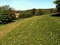 Longfields Parkland Darton - geograph.org.uk - 418288.jpg