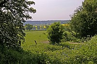 Looking across ditch to farmland, Botany Bay Farm, Enfield - geograph.org.uk - 796000.jpg