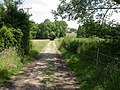 Lower Bockhampton, footpath - geograph.org.uk - 1375420.jpg