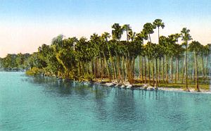 DeBary, Florida - St. Johns River in c. 1915