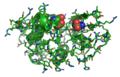 Lysozyme 1LZ1.png