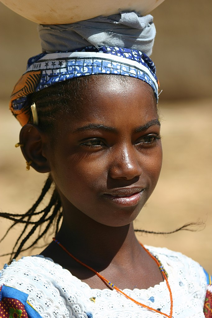 Mandinka - Wodaabe* Fulani - Ancient Heart: Mandinka And Fulani Music Of The Gambia