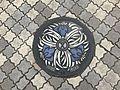 Manhole of Miyazaki, Miyazaki 2.jpg