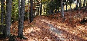 Marsh-Billings-Rockefeller National Historical Park carriage road.jpg