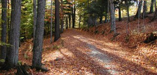 Marsh-Billings-Rockefeller National Historical Park Historic estate in Woodstock, Vermont (US) managed by the National Park Service