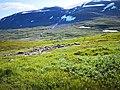 Marshy terrain in Sarek.jpg