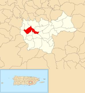Matón Arriba, Cayey, Puerto Rico Barrio of Puerto Rico