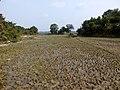 Mawlaik, Myanmar (Burma) - panoramio (8).jpg
