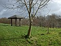 McCauley Park, Omagh - geograph.org.uk - 1196394.jpg