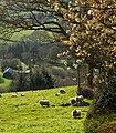 Merthyr Cynog, Wales IMG 0522.jpg - panoramio.jpg