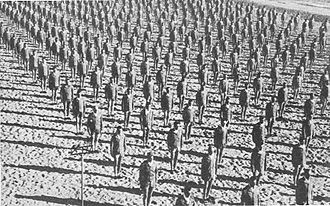 Army Air Forces Training Command - Officer candidates performing calisthenics on the beach, Miami Beach Training Center OCS training, Florida