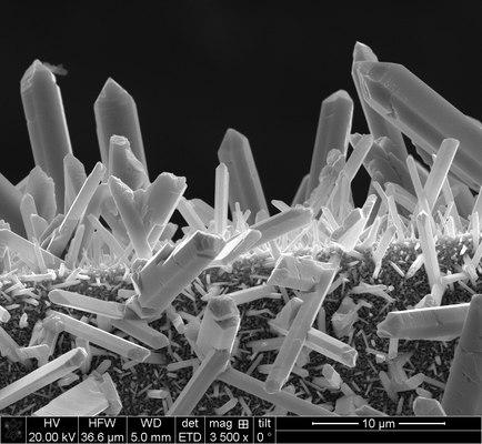 Micropillars GST.tif