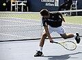 Mikhail Youzhny at the 2009 US Open 02.jpg