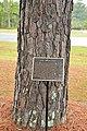 Moon tree plaque, Waycross, GA.jpg