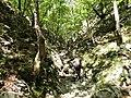 Mudna dol - panoramio (9).jpg