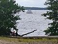 Mueggelsee - Noerdlichen Ufer (Mueggel Lake - Northern Bank) - geo.hlipp.de - 38488.jpg