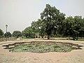 Mughal Lotus Pond Sunder Nursery.jpg
