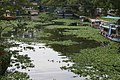Mullakkal, Alappuzha, Kerala, India - panoramio - Robert Helvie.jpg