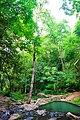 Namtok Samlan National Park 02.jpg