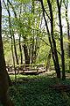 Nationalpark Hainich-Erlebnispfad Feensteig-by-Leila-Paul-IMG 3975 03.JPG