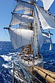 Navio-Veleiro Cisne Branco (16400207521).jpg