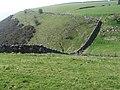 Near Castern Wood above Manifold Valley - geograph.org.uk - 1233893.jpg