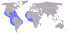 Range (in blue)