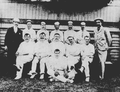 New South Wales cricket team 1898.png